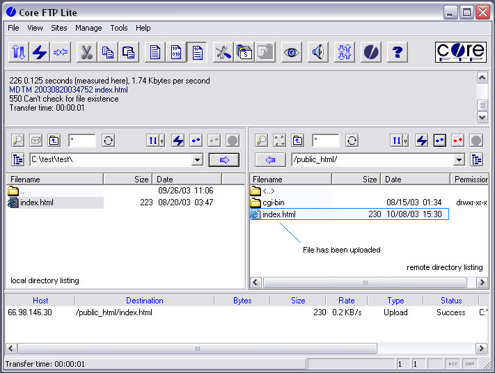 download file from ftp server to local drive in java